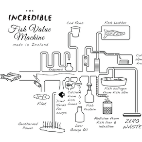 """Introducing """"The Incredible Fish Value Machine"""""""