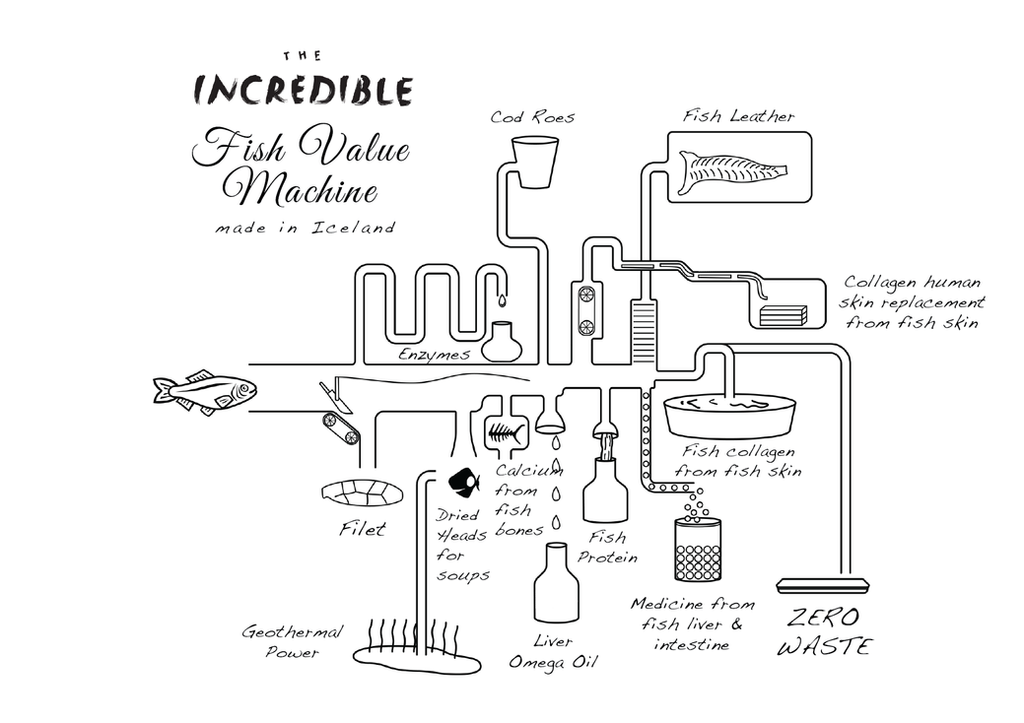 Introducing The Incredible Fish Value Machine