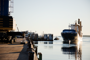 August Morning Vessel Arrival at the IMT in Photos