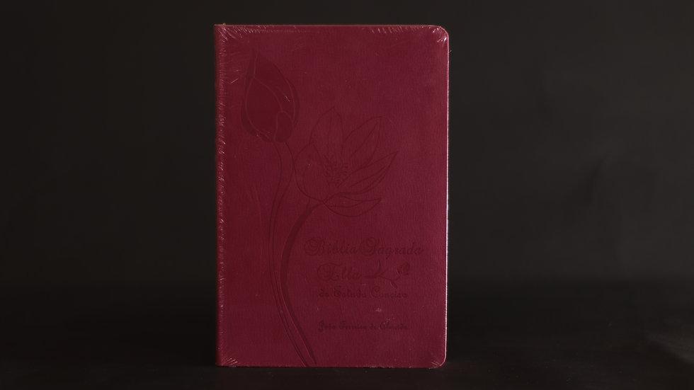 Bíblia Sagrada Ella de Estudo Conciso