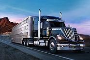 Lone Star truck, ii.jpg