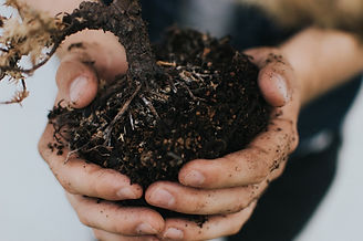 soil-1.jpg