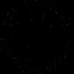 Top Chamber Shooting School logo