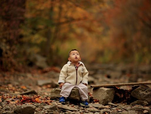 El poder de la naturaleza para nuestros niños