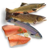 Colis découverte: Filets de truite,saumon de fontaine ...