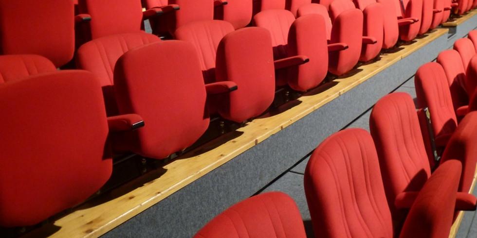 Sortie Théâtre pour les adultes (1)