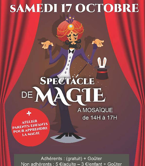 AFFICHE SPECTACLE MAGIE.jpg