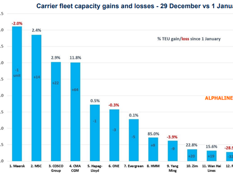 HMM And CMA CGM Realize Biggest Fleet Growth In 2020