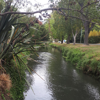 Christchurch: A daily choice to make