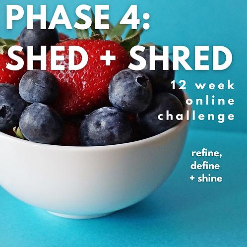 PHASE 4: SHED+SHRED online challenge