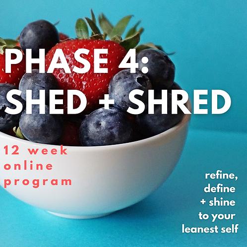 PHASE 4: SHED+SHRED PROGRAM