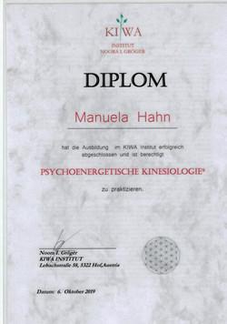 Diplom Psychoenergetische Kinesiolog