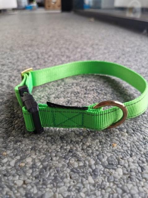 Halsband voor Tube-Line Groen