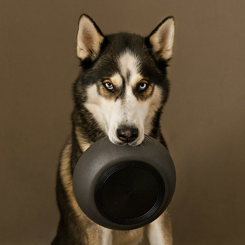 District 70 BAMBOO Dog Bowl Dark Grey