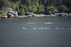 Kayak por Carnota a Ezaro