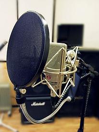 Nuemann TLM 103 запись вокала студия звукозаписи
