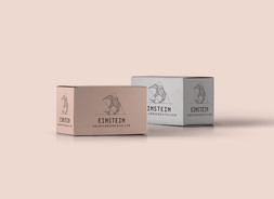 Einstein_Verpackung1.jpg