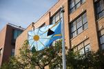 """Flag Installation, """"Temporary Allegiance,"""" Gallery 400, Chicago, 2013"""