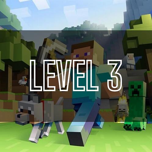 Minecraft Lvl 3
