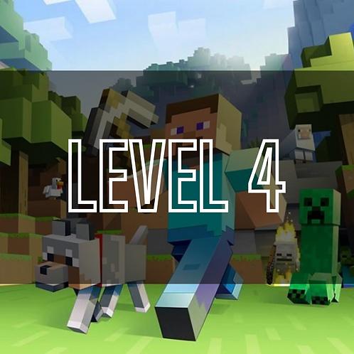 Minecraft Programming (Level 4)