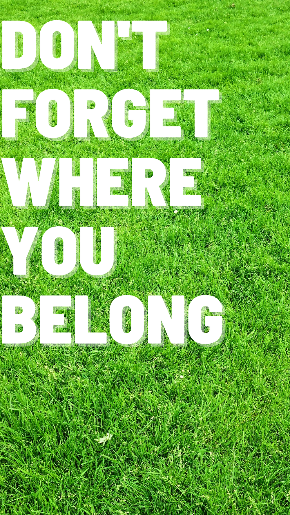 one direction wallpaper don't forget where you belong