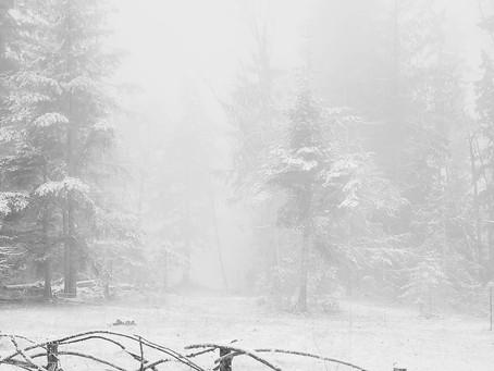Winter... Finally!!