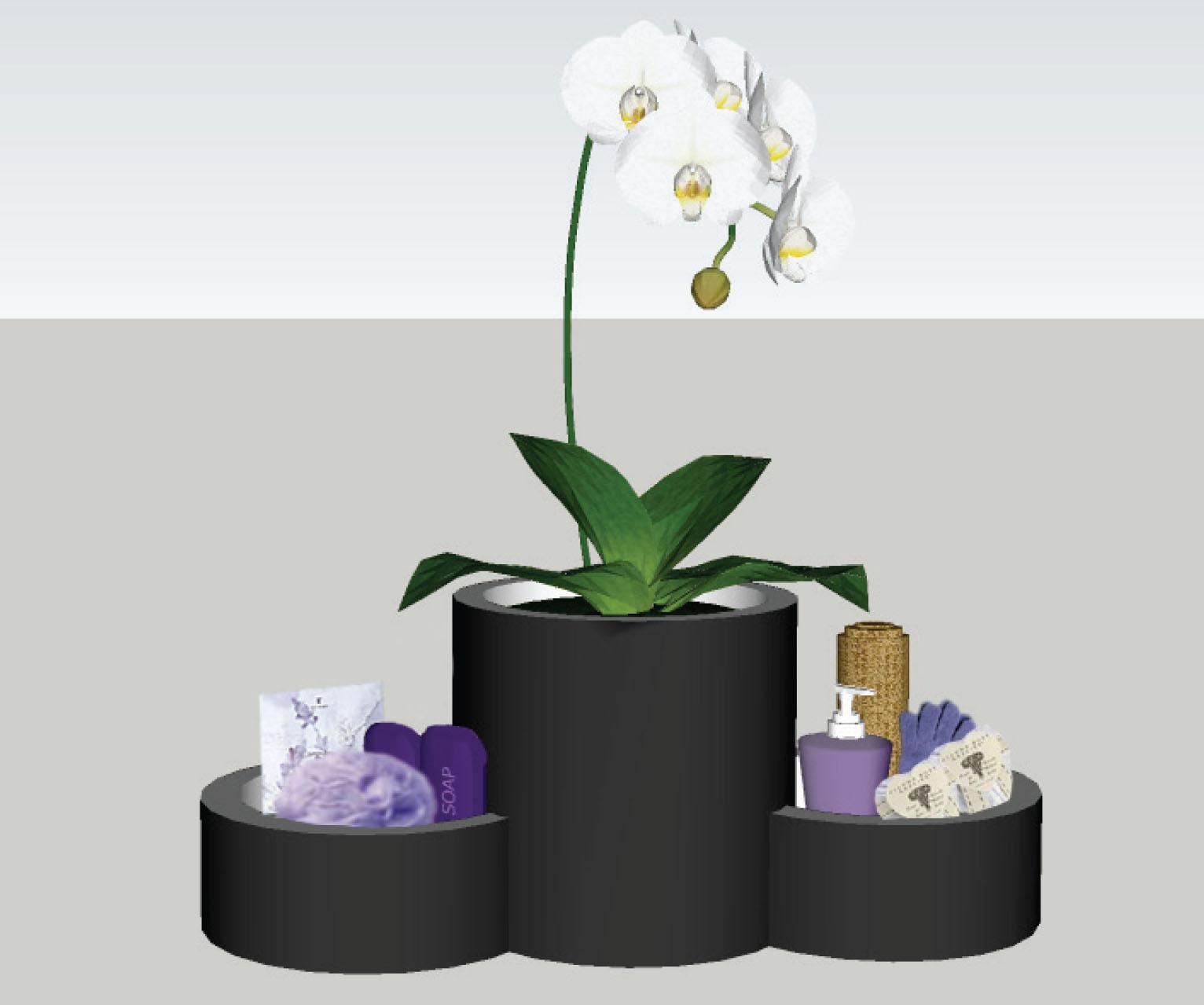 TF_orchid.jpg