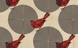 birds_bg.jpg
