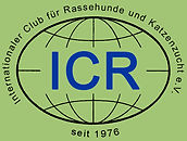ICR-Banner Kopieetr.jpg
