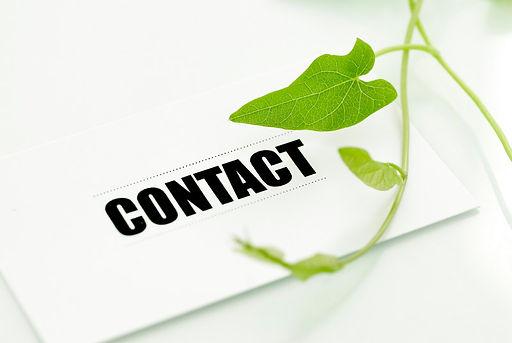Contact Lomme Primeurs