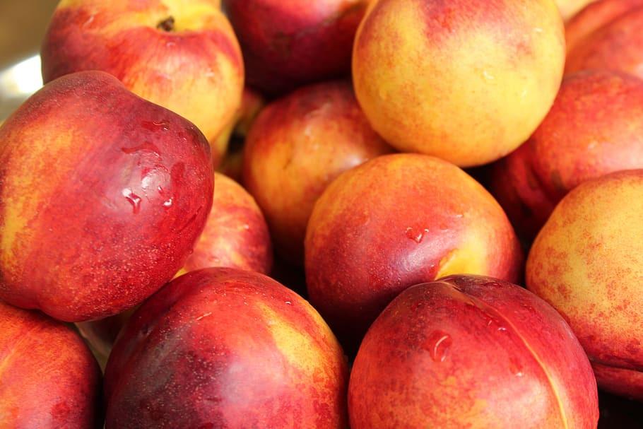 Fruits à noyau Lomme Primeurs