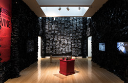 Solo Exhibition at the Carver Museum
