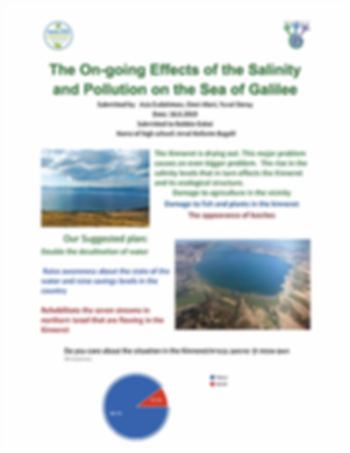 The On-going Effects of the Salinity and Pollution on the Sea of Galilee