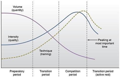 Periodisation chart
