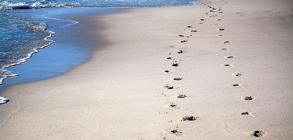 footprints-600743__340.jpg
