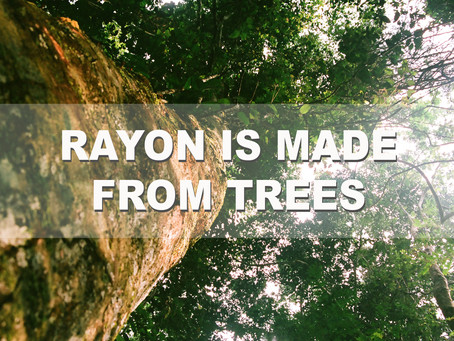 Rayon is Made from Trees