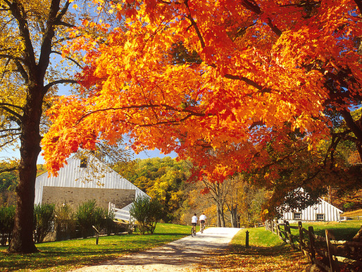 Fall for ONLY-IN-PHILLY Attractions & Exhibits This Fall