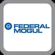 federal mogul.png