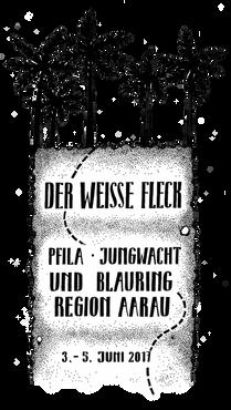 Pfingstlager Jungwach Blauring Region Aarau 2017