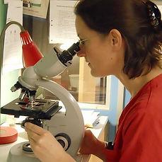 urinprov, analysering av urinprov
