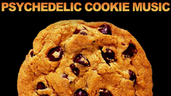 Psychedelic Cookie Music   2013