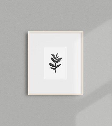 Laurel Print