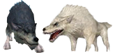 1grey_white_wolf.png