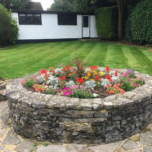 Lawn Care Sevices in Haywards Heath