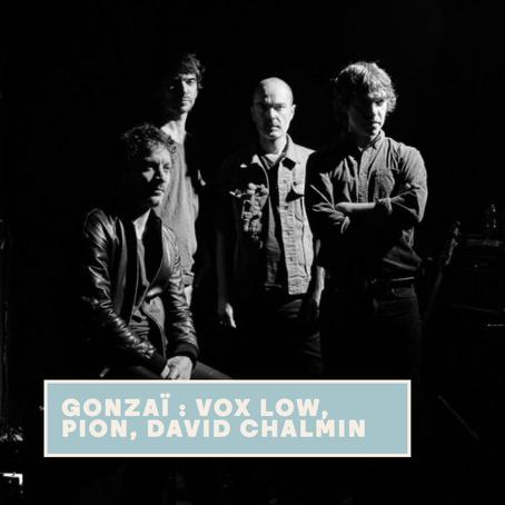 Gonzaï Night : David Chalmin - la Maroquinerie (avec Vox Low et Pion)