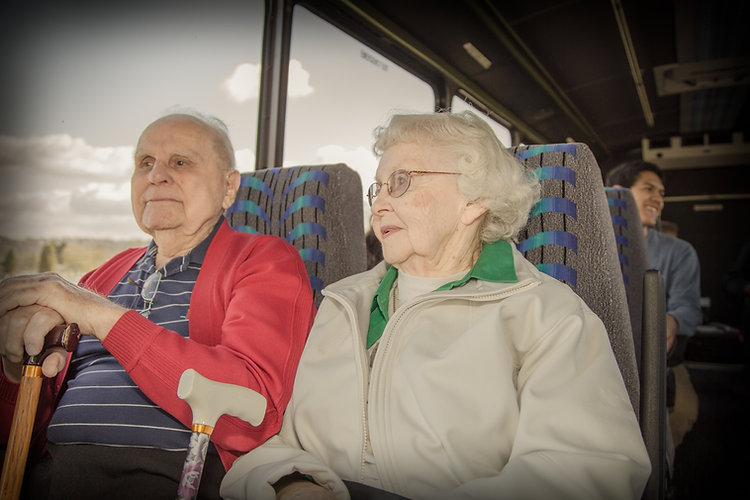 seniorsonbus.jpg