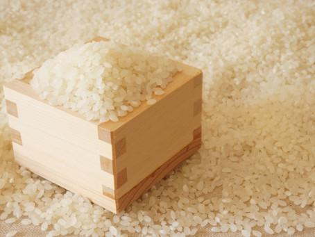 バストUP&ヒップUPに欠かせないお米とおもち