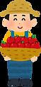 fruit_nouka_man_ringo.png