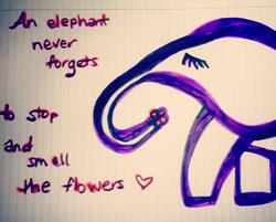 Sketch_Elephant_Saying