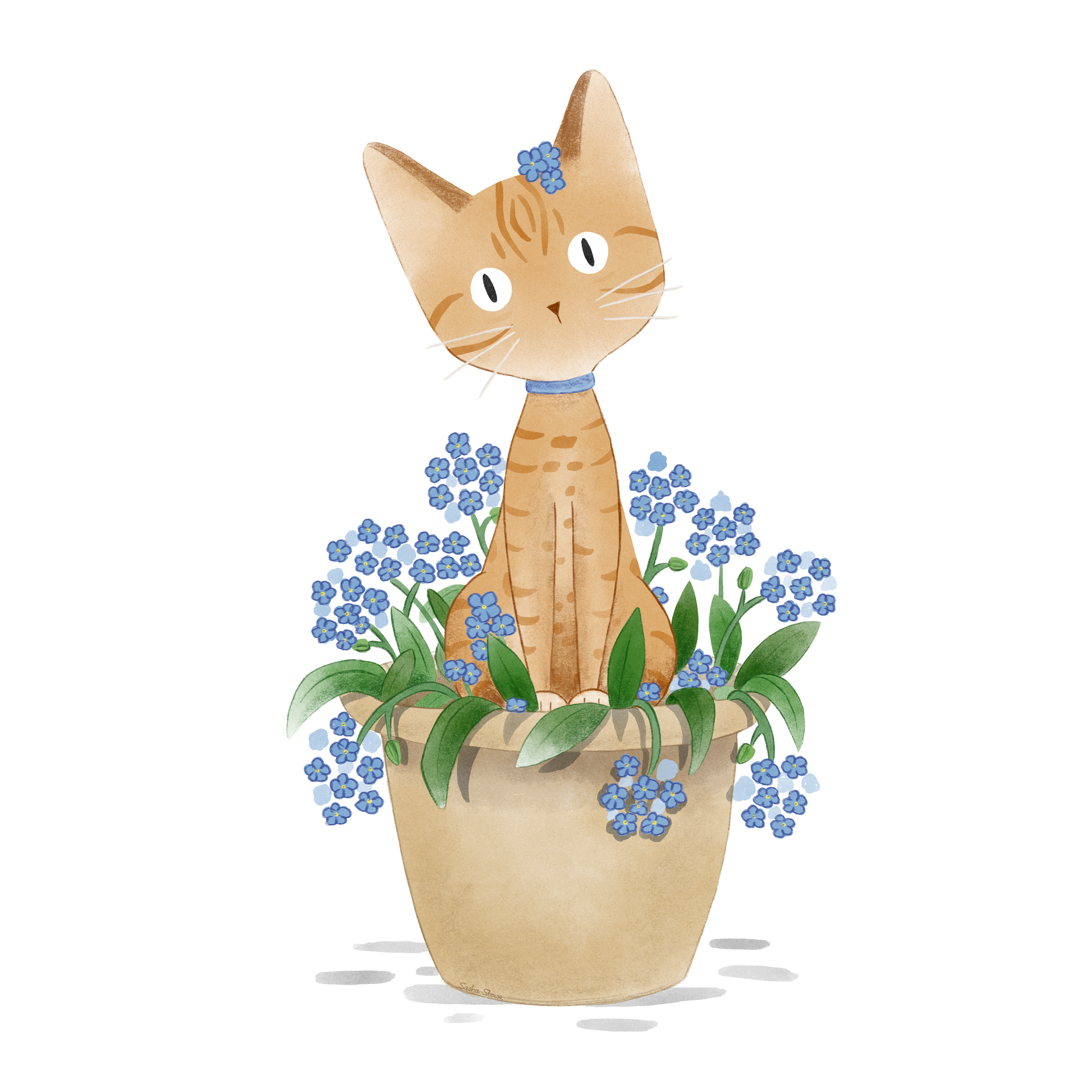 Pippin in Forget-Me-Nots